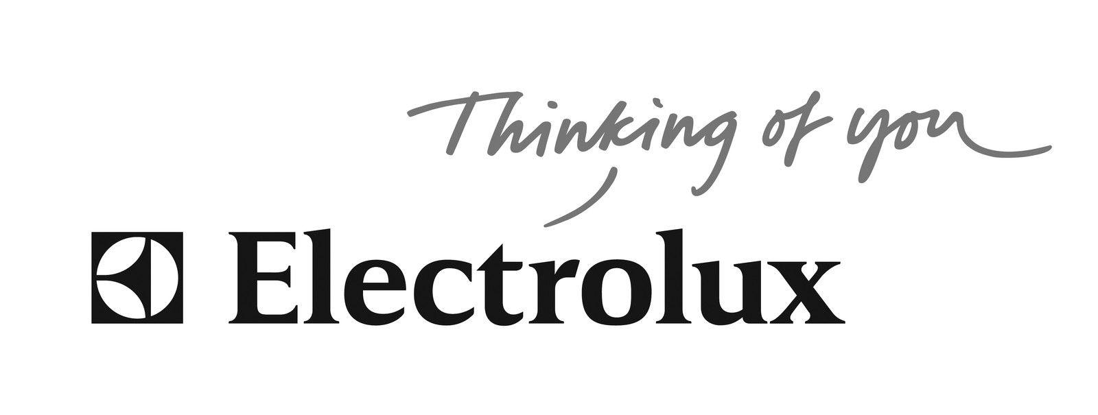 Electrolux Vaccum Bags